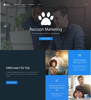Raccoon Marketing-min